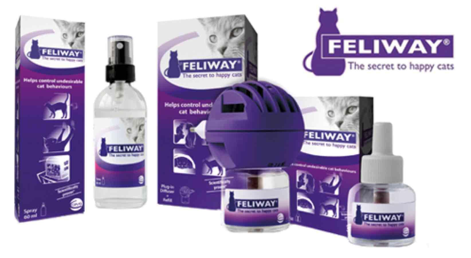 artikel-feliway-stopt-ongewenst-kattengedrag-medpets-nl-4-1398776130-308